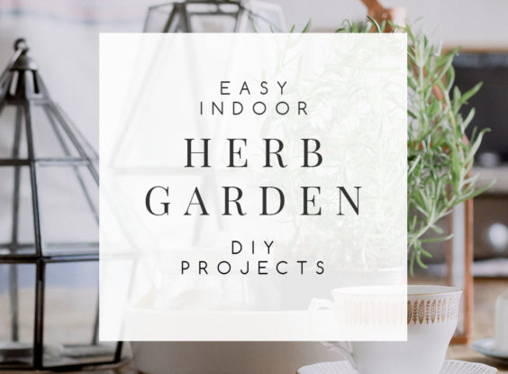 10 Easy & Inexpensive Ideas for Creating Your Own Indoor Herb Garden
