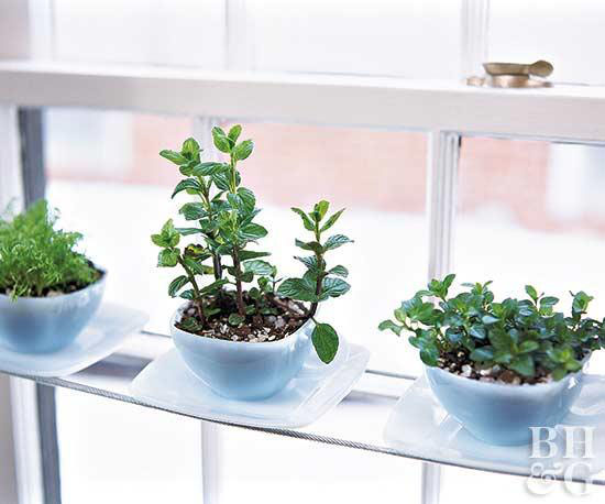 Nothing is better than cooking with fresh herbs. If you have limited outdoor space or unpredictable weather, don't let it keep you from growing your own. Bring the garden inside! On the blog, I'm sharing 10 easy indoor herb garden ideas that you can do yourself. | #diy #indoorherbgarden #herbgarden #interiordecorating #interiordesign #decoratingblog | TheCasaCollective.com